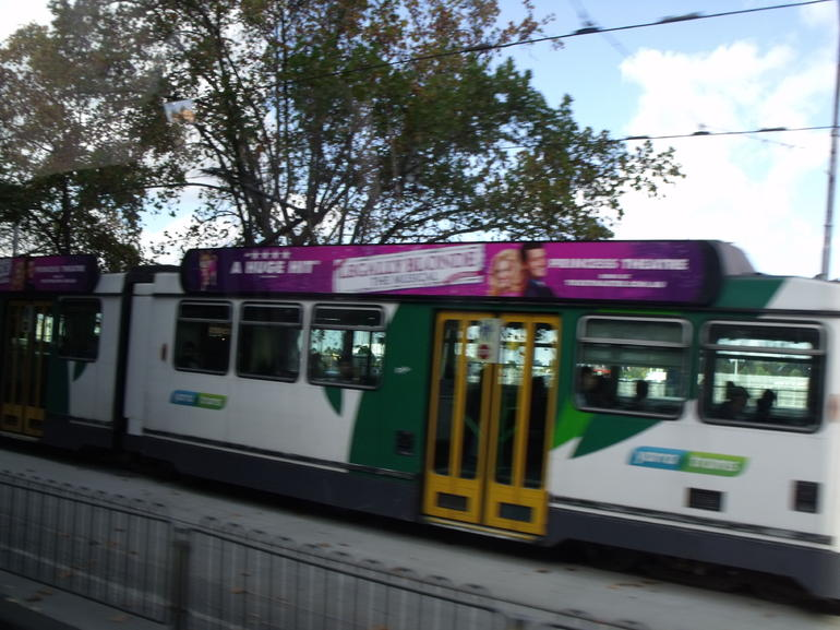 Trams on the City Tour - Melbourne