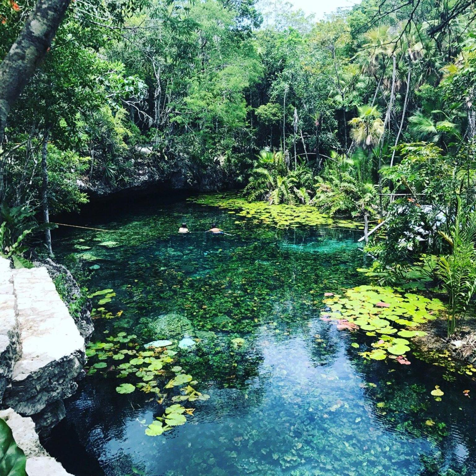 Cenote 2 Ojos and Tulum Experience from Cancun