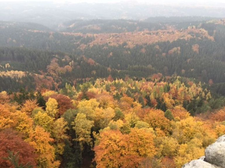 The fall colors were breathtaking!