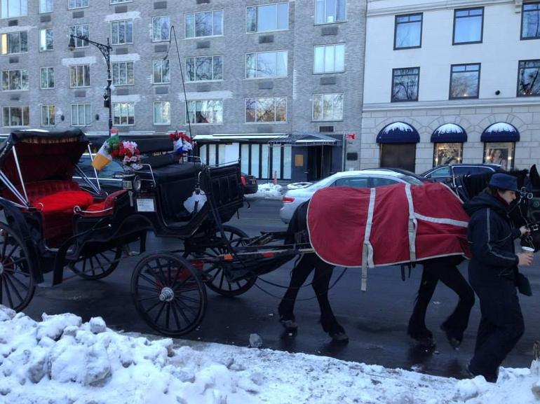 Horse  and  Carriage 3 - New York City