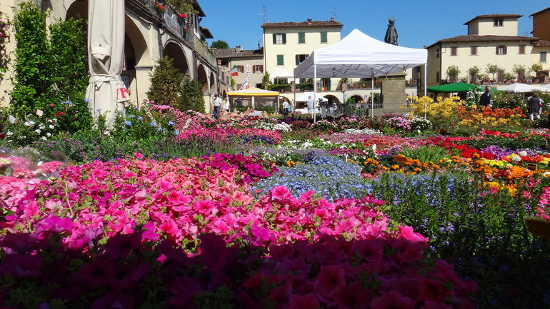 The Marketplace in Greve In Chianti - Florence