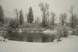 Photo of Seattle Leavenworth Christmas Tour from Seattle Icicle River near Leavenworth