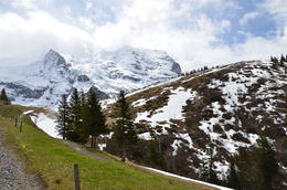 Photo of Zurich Jungfraujoch: Top of Europe Day Trip from Zurich jungfrau