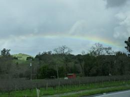 We were lucky enough to catch a rainbow as we drove along., Kelly G - February 2010