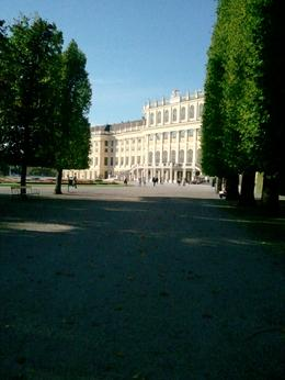 Photo of Vienna Schonbrunn Palace Evening: Palace Tour, Dinner and Concert Schonbrunn Palace from the park.