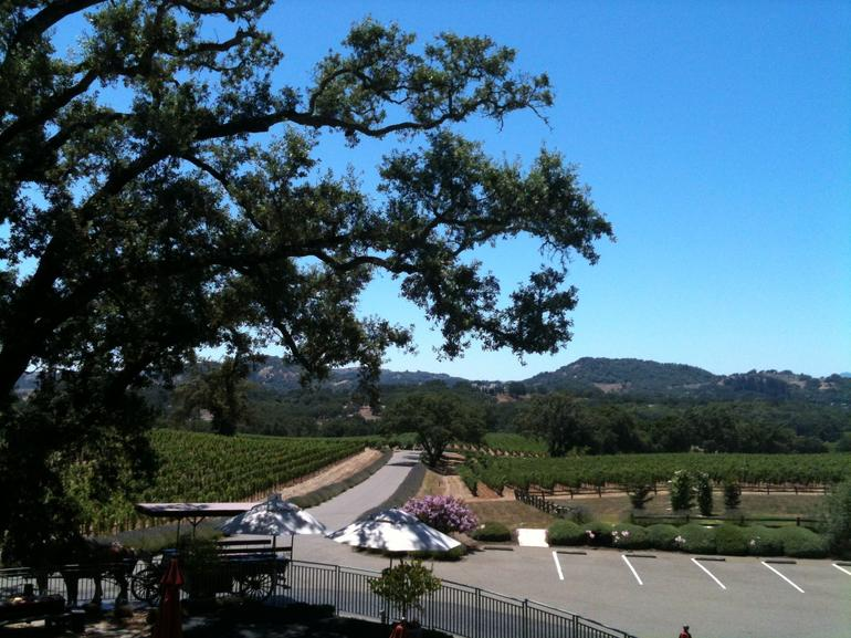 View from Hanna with the Carriage.JPG - Napa & Sonoma