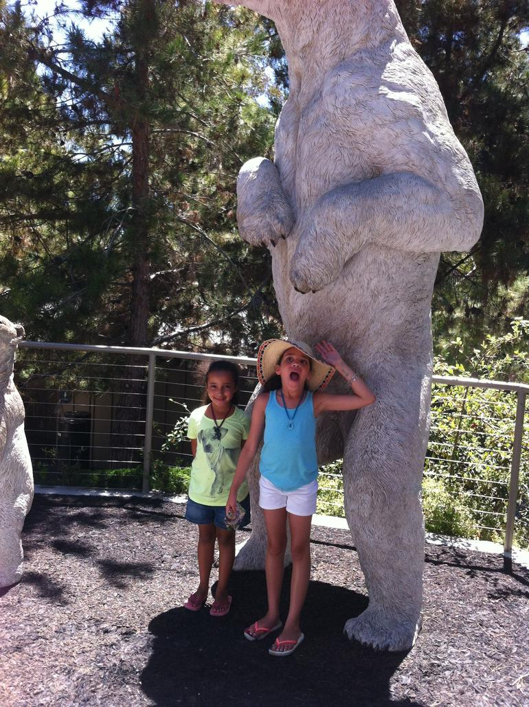 Giant bear! - San Diego