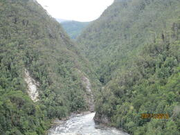 Photo of null Tasmania West Coast Wilderness Railway Tour King River