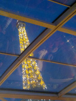 Light display of the Eiffel Tower as seen from on board the Bateaux Parisiennes. , Aino S - April 2013