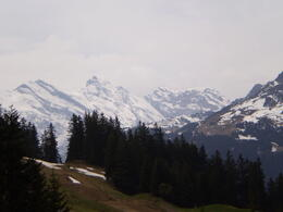 Photo of Zurich Jungfraujoch: Top of Europe Day Trip from Zurich Bus Ride