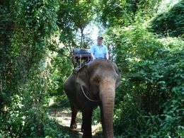 This is me on the elephant. It was fantastic and i had that silly grin the whole time , Larry T - June 2015