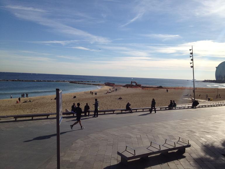Barcelona Shore Excursion: Barcelona City Hop-on Hop-off Tour - Barcelona