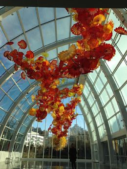Stunning suspended glass sculpture in the Glasshouse in the Chihuly garden. , AM - February 2016
