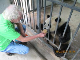 That's me feeding the hungry little panda! , ed m - October 2014