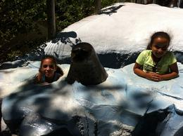 Photo of San Diego San Diego Zoo Kids having fun