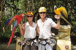 Photo of Cancun Cancun Extreme Zipline Canopy Tour Parrots