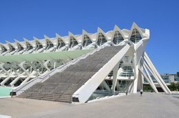 Another impressive angle view of the science museum of Valencia. , David Lally - May 2015