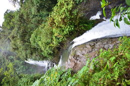 Photo of San Jose Combo Tour - Best of Costa Rica from San Jose two waterfalls