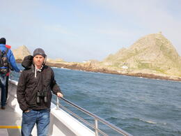 Farallon Islands, Dan M - April 2013
