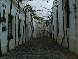 Photo of Seville Jerez and Cadiz Day Trip from Seville Jerez and Cadiz Day Trip from Seville