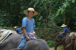 Photo of Chiang Mai Chiang Dao Elephant Jungle Trek and Ping River Rafting Tour from Chiang Mai One of the mahouts