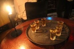 After the tour, we went to a bar to sample vodka, beer, and herring. , Richard M - October 2013