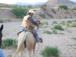 Photo of Las Vegas Wild West Sunset Horseback Ride with Dinner Take me along for the ride!