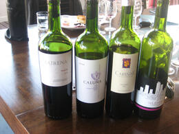 Photo of Buenos Aires Buenos Aires Small-Group Wine Tasting Wines