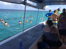 Catamaran cruisers scuba diving and swimming with the reef sea life during relaxing break en route to the Falls , JOVIT M - August 2015