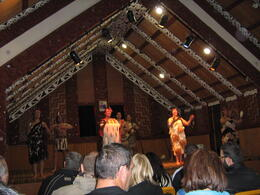 Photo of Auckland Waitomo Caves and Rotorua Day Trip from Auckland Maori Arts and Crafts Institute