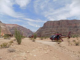 Photo of Las Vegas Grand Canyon All American Helicopter Tour Sweet birds lined up for a fantastic trip back!