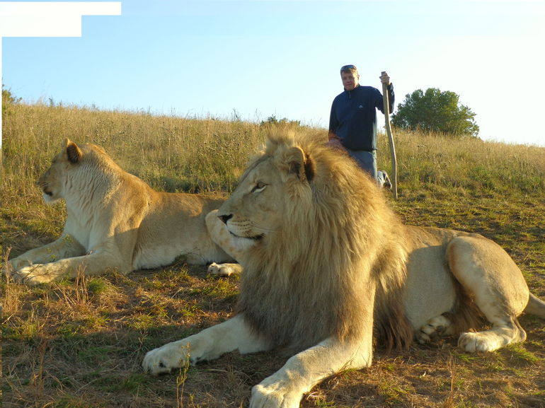 Me getting a picture taken with the lions.