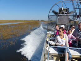 Photo of Miami Miami Everglades Airboat Adventure with Biscayne Bay Cruise Vollgas
