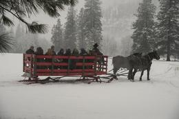 Photo of Seattle Leavenworth Christmas Tour from Seattle Sleigh ride near Icicle River