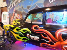 Photo of Las Vegas Pawn Stars Tour of Las Vegas Tanked's Panel Fish Tank