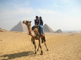 Photo of Cairo Private Tour: Giza Pyramids, Sphinx, Egyptian Museum, Khan el-Khalili Bazaar DSCN0719