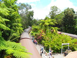 Kuranda Station , Catherine - November 2011