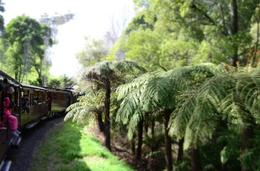 Photo of   Puffing billy