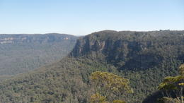 Photo of Sydney Blue Mountains Nature and Wildlife Day Tour from Sydney SAM_4312