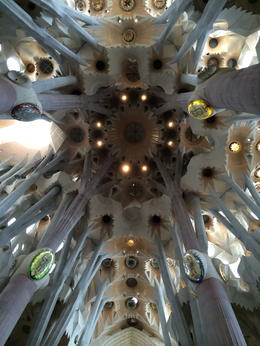 Photo of Barcelona Skip the Line: Barcelona Sagrada Familia Tour The amazing ceiling