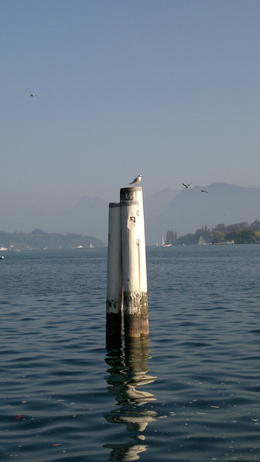 Photo of Zurich Lucerne City Tour water