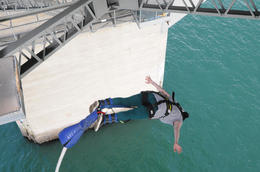 Photo of Auckland Auckland Harbour Bridge Bungy Jump Auckland Bridge Bungy 2 2454AKL_BUNGY.jpg
