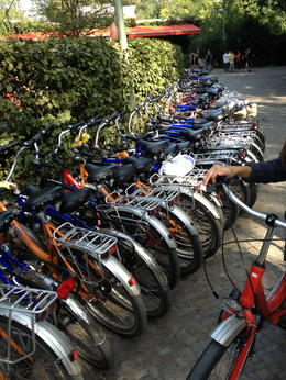 Photo of Berlin Berlin Bike Tour Bikes at the biergarten