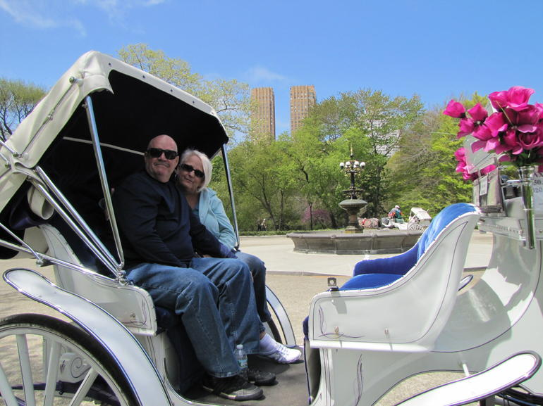 Central Park Carriage Ride - New York City