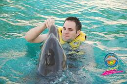 Feeding the dolphins! - April 2011