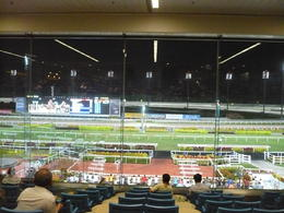 Photo of Singapore Singapore Turf Club: Horse Racing with VIP Lounge Access P1010676