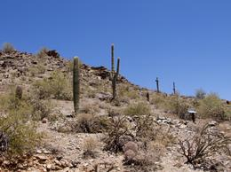 Lots of rocks and cactus of all types on this tour. , David S - May 2013