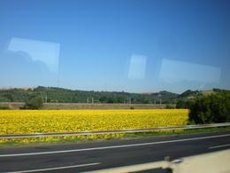 This was taken from the bus on the way to Florence, Paul P - July 2009