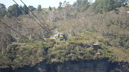 Photo of Sydney Blue Mountains Nature and Wildlife Day Tour from Sydney SAM_4347