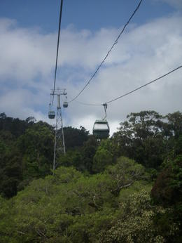 Sky Rail ride over rain forest. , Patti - May 2011